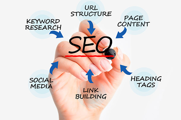 SEO Service Company in USA